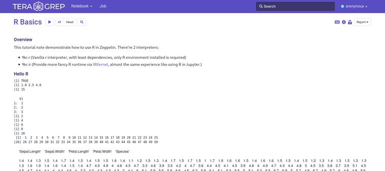 Screenshot_2021-05-26 Teragrep(2).png